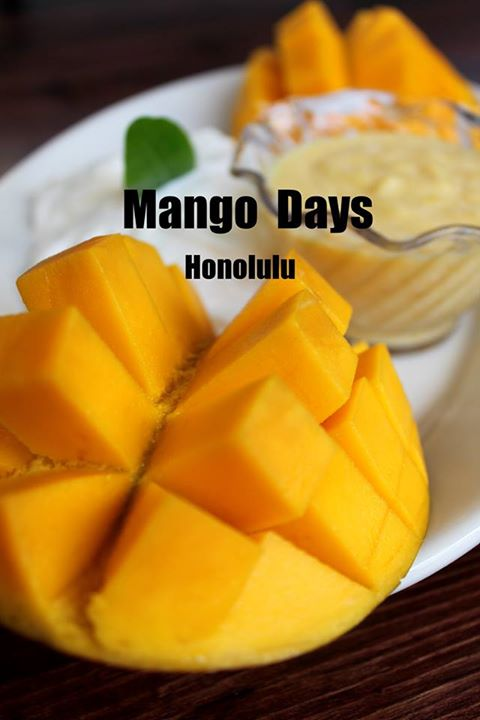 mango days (2)
