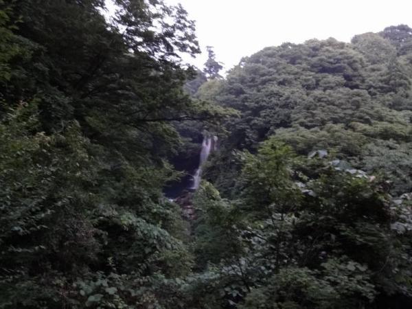 2013東北2 145