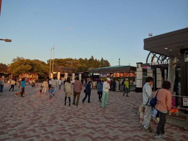 2013-10-12 福島 117