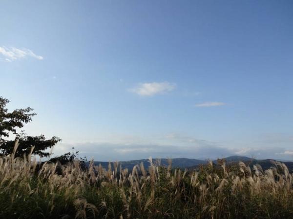 2013-10-14 伊豆 043