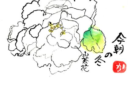 山茶花1212