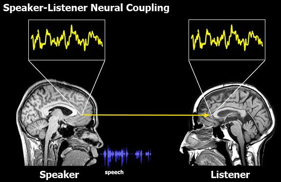 脳の同期のimage