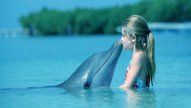 イルカと少女のimage