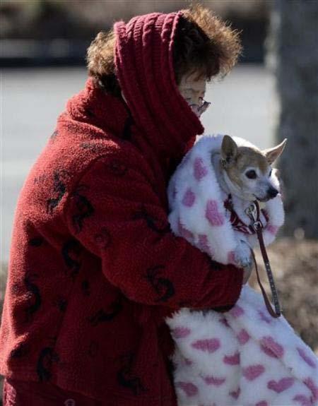 アメリカ大寒波と老女とわんこ補足image_convert_20140110212106