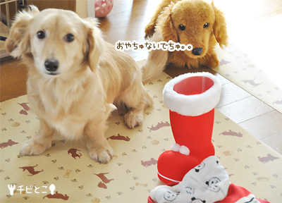 りっくんクリスマスプレゼント♪