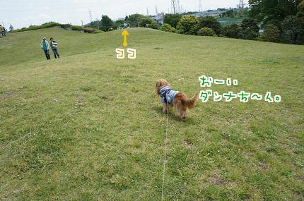 嵐丸 2013.5.4-22
