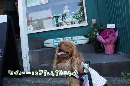 嵐丸 2013.5.6-7