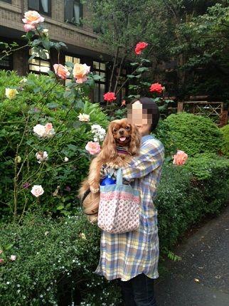 嵐丸 2013.5.17-6