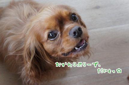 嵐丸 2013.5.25-14