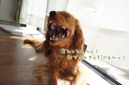 嵐丸 2013.7.3-2