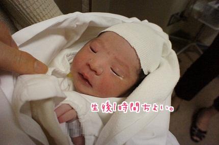 嵐丸 2013.7.16-1