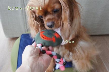嵐丸 2013.7.23-15