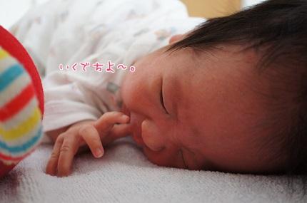 嵐丸 2013.7.30-1