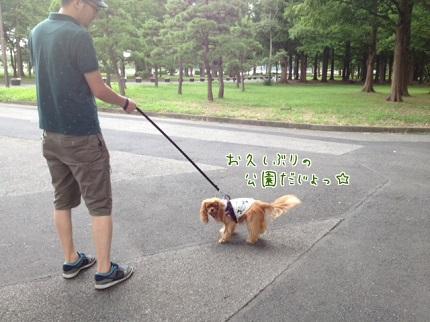 嵐丸 2013.8.4-2