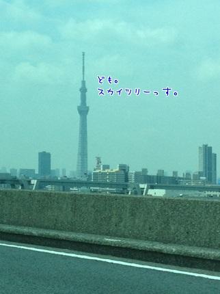 嵐丸 2013.8.4-1
