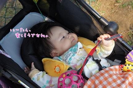 嵐丸 2013.10.17-4