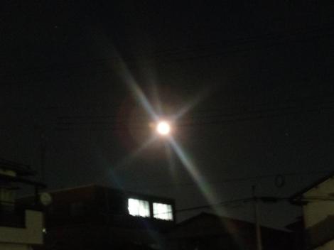 寒風に光り輝く月光が冴えてる様子を写メしました