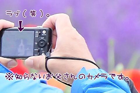 7G6A2875a.jpg