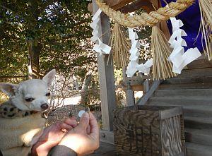 霊犬神社3