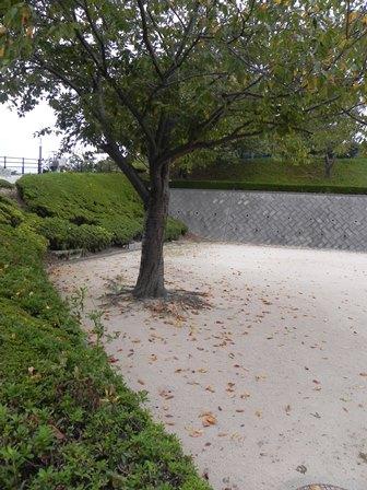 桜山公園到着