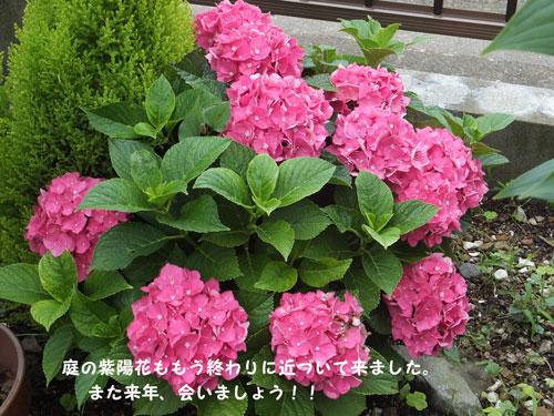 2013--6gatsu-23nichi-005.jpg