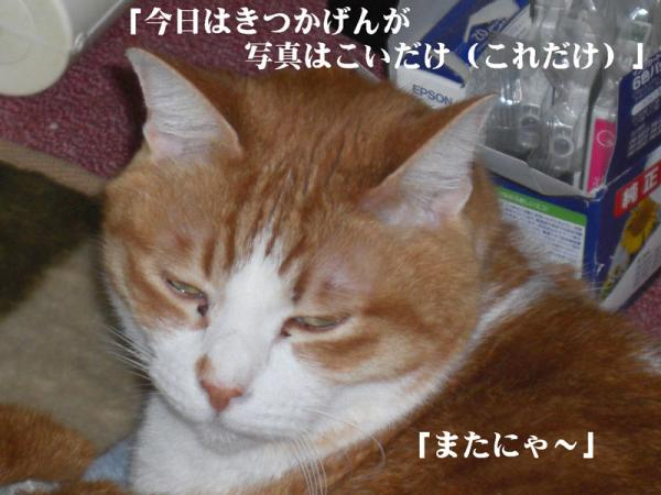 縺薙l_convert_20130411225653