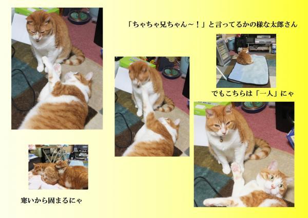 闌カ螟ェ驛酸convert_20130422214618