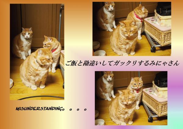 繧ャ繝・け繝ェ_convert_20130514225846