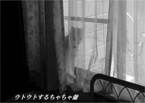 縺・→_convert_20130515221307