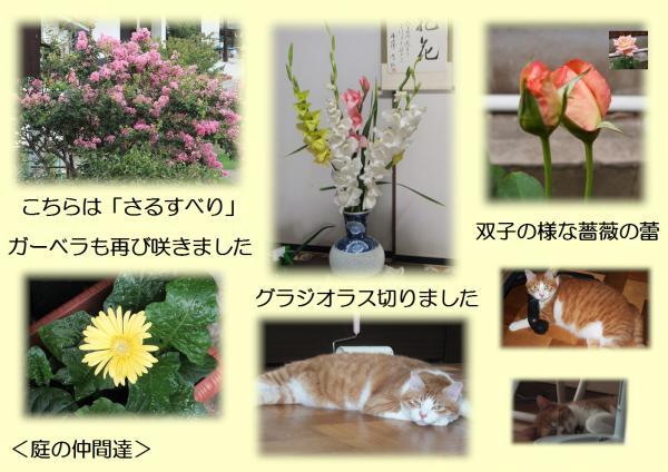 なかま_convert_20130731214536