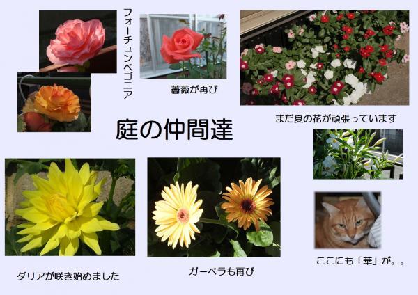 庭_convert_20130930224926