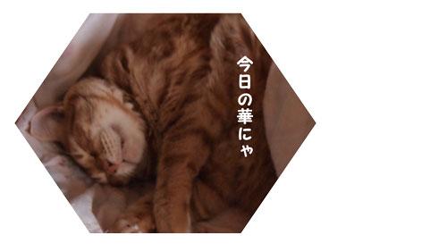 PA032688.jpg
