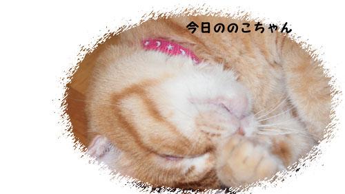 PA142708.jpg