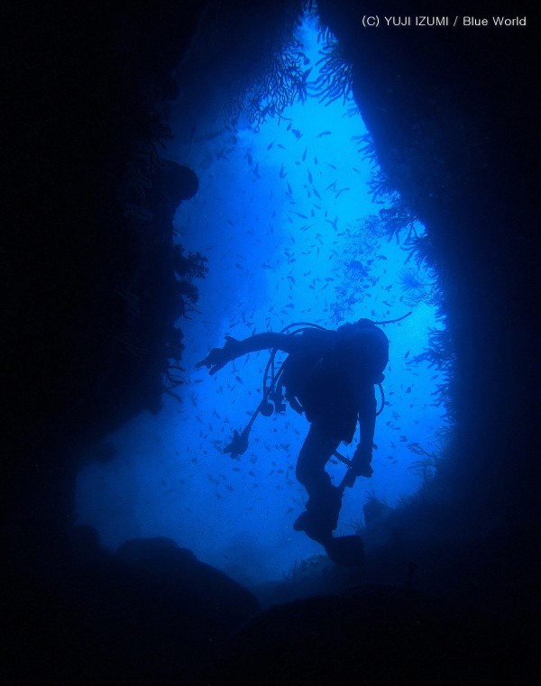 青海島 海底トンネル