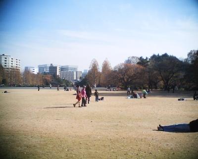 冬枯れのプラタナスと東京タワー:R2