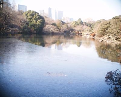 凍る池・新宿御苑:R2