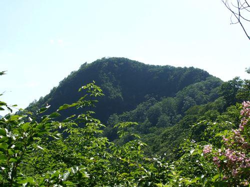 sabusawa2.jpg