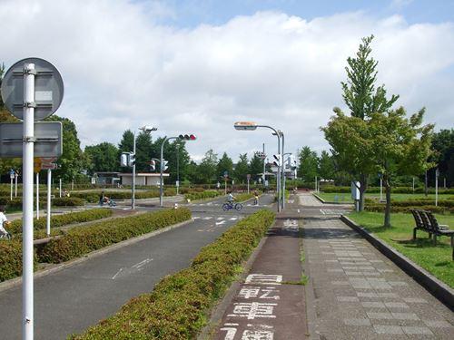 wakabayashi-chikaku4.jpg