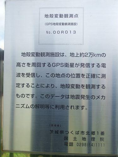 wakabayashi-chikaku6.jpg