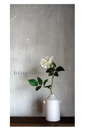 ジラソーレ2012-12