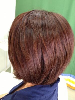 9月アップ髪型1 (8)