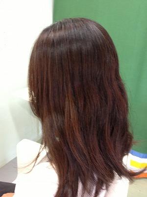 9月アップ髪型1 (4)