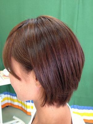 9月アップ髪型1 (6)