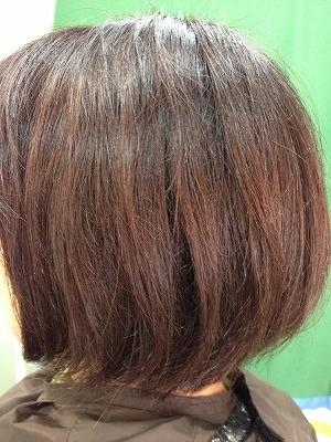 9月アップ髪型1 (10)