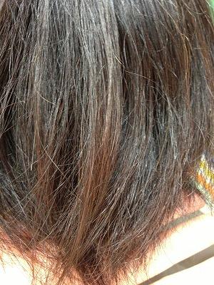9月アップ髪型1 (12)