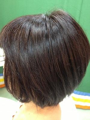 9月アップ髪型1 (13)