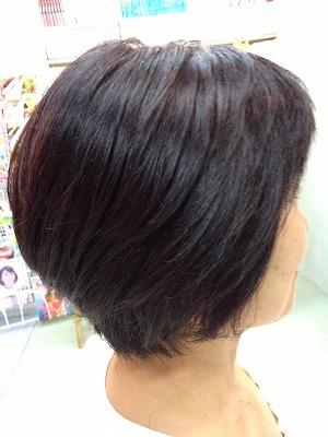 9月アップ髪型1 (14)