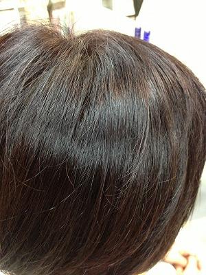 9月アップ髪型1 (15)