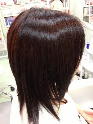 9月アップ髪型1 (24)