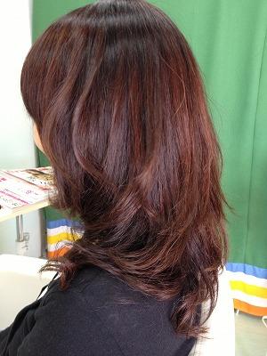 9月アップ髪型1 (34)